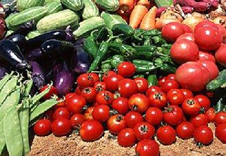 """<b>湖南蔬菜日调运量达800余吨 确保本地市民的""""菜篮子""""</b>"""