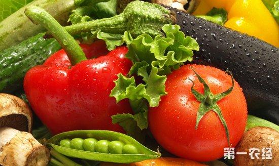 山东蔬菜市场结束三周价格连涨行情