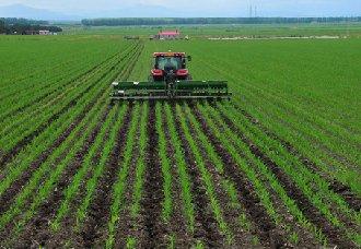 """<b>植物均衡营养肥为作物""""减肥""""增效</b>"""
