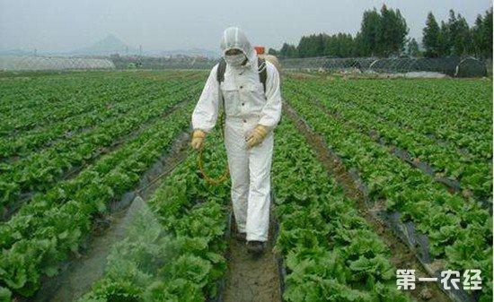 农药混合使用时要注意些什么?这四点一定要记牢