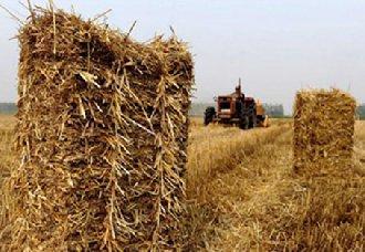 吉林长春建立秸秆离田机制补贴 全力推动秸秆转化利用