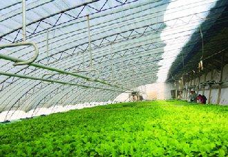 水肥一体化技术为农业果业注入全新动力
