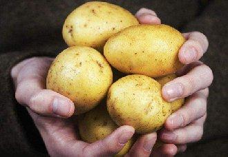 如何提高土豆的卖相?土豆的种植要点