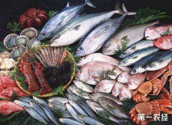 2018年12月份上海水产市场水产品行情分析