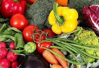海南海口调运储备蔬菜510吨 保障市民日常需求