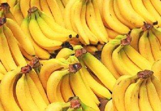 香蕉黄叶病的主要症状以及防治措施