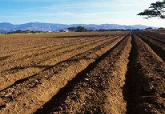 我国为全面深化农村改革 新的农村土地承包法已于本月1日正式实施