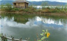 清理鱼塘时怎么消毒效果好成本低?这几种方法要记牢