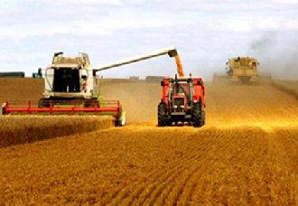 <b>安徽庐江已成为省优质专用粮食生产示范基地 助推农业产业发展</b>