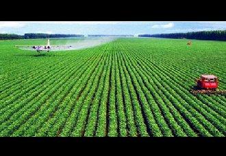 <b>2018年我国十大农业科技进展</b>