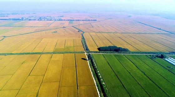我国到2020年将确保建成8亿亩高标准农田