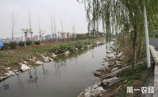 农村河道管护