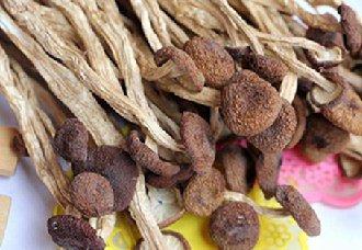 茶树菇一斤多少钱?