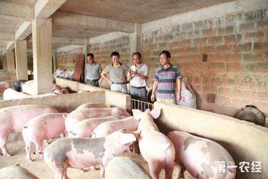 怎么样才能杀死非洲猪瘟病毒?70度10余分钟即可灭杀