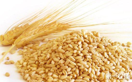 2019年下半年我国小麦价格走高可能性大