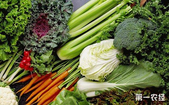 春节临近,北京蔬菜价格稳中微涨