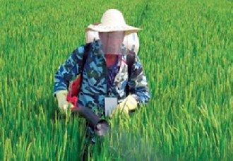 <b>青海为实现绿色发展 将进行农药减量行动</b>
