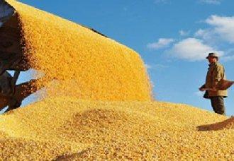 <b>《江苏省粮食流通条例》已被正式列入年度立法计划</b>