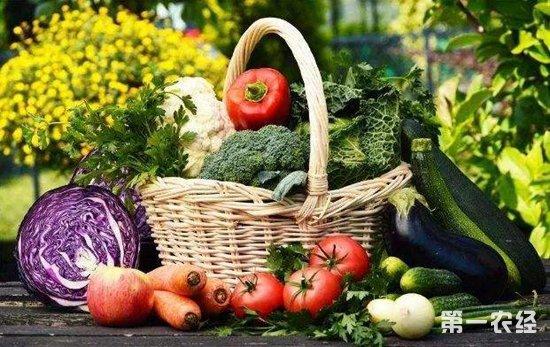 黑龙江哈尔滨:小年过后 蔬菜价格上涨