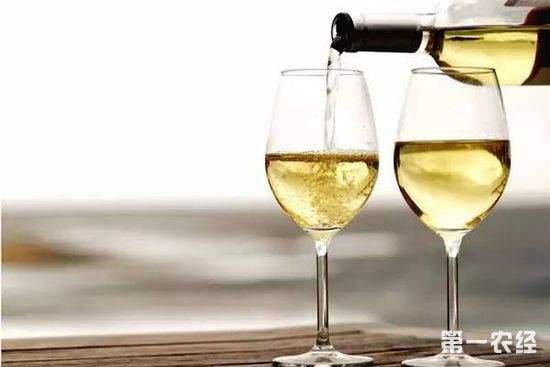 新手要如何充分的认识白葡萄酒?