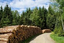 2018年全国共发现林业行政案件18.29万起