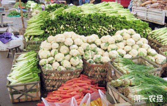 河南多地农贸市场菜价略高 元宵节后或将逐渐回落