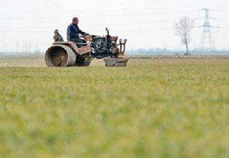 我国将全面做好春耕备耕各项工作 确保全年农业粮食丰收