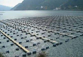 <b>越南水产部门将力争在今年实现出口额达100亿美元的目标</b>