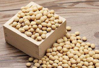 我国将实施大豆振兴计划 继续开展国际大豆贸易
