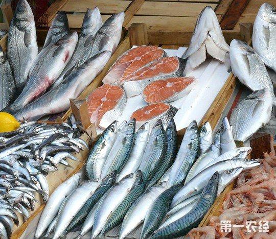 山东威海水产品价格节后较节前震荡回落