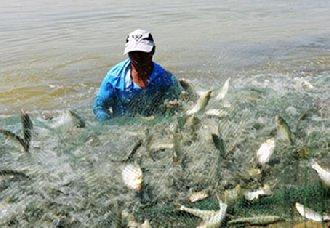 我国将开展渔业安全生产监管工作 确保渔业安全生产
