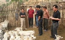 2019年畜牧兽医专业的技能人才就业前景如何?