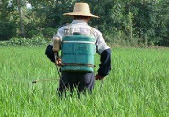 <b>上海崇明推行绿色农药使用与回收力度 覆盖率可达80%</b>