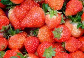 八倍体草莓高质量基因组发布,有利于改善草莓品质