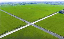 农业农村部印发通知 部署高标准农田规划建设