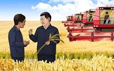 <b>2019年农民应该种什么?从中央一号文件看三农</b>