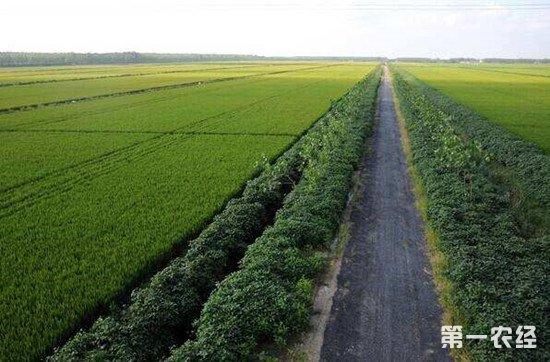 陕西省根据自身特点 构建高标准农田方案