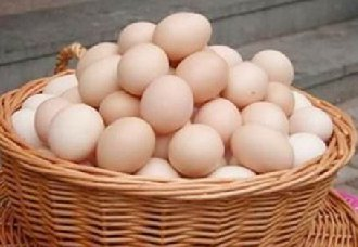 <b>台湾鸡蛋价格暴涨 鸡蛋贵过猪肉</b>