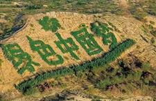 """全球绿化面积较20年前增加5% """"中国绿""""受全球网友赞誉"""