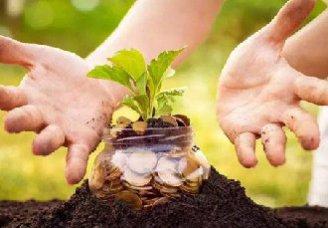 订单农业着力带动农户增收脱贫