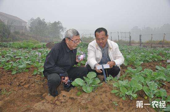农民科学家沈昌健:因地制宜发展小型农业机械