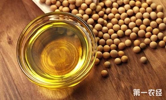 国内菜油、豆油、棉油、棕榈油等食用油市场价格行情