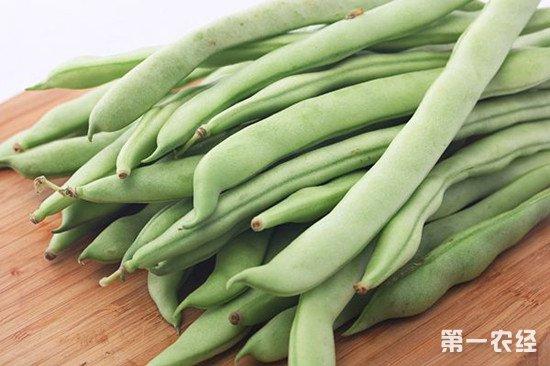 豆类蔬菜的施肥技巧:注意遵守这些原则