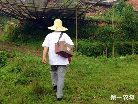 农民健康离不开乡村医生 人大代表建议加强乡村医生培养
