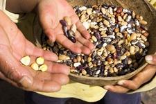 农业部门开展农资种子检查 为春耕生产护航