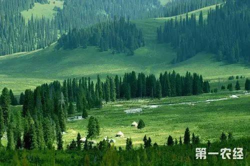 绿水青山就是金山银山 生态补偿机制亟须完善