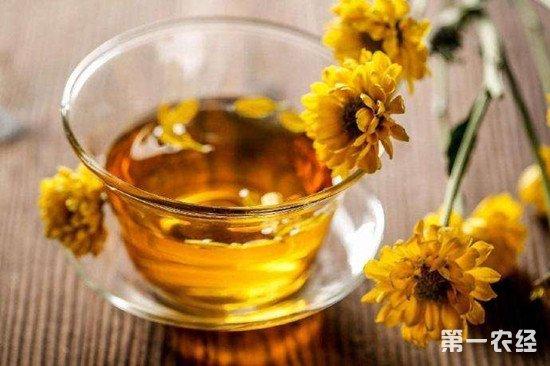 武汉一女生喝菊花茶致体寒腹泻 医生介绍饮食要注意个人体质