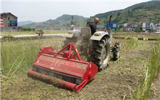 宁夏推广秸秆还田等绿色农业技术 推进乡村生态振兴