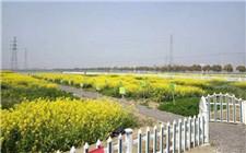 太仓:扩大农村人才队伍 加强新型职业农民的培育