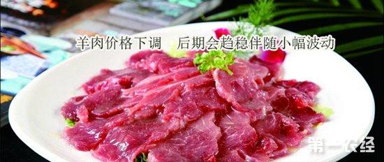 羊肉价格下调10% 已进入趋稳阶段